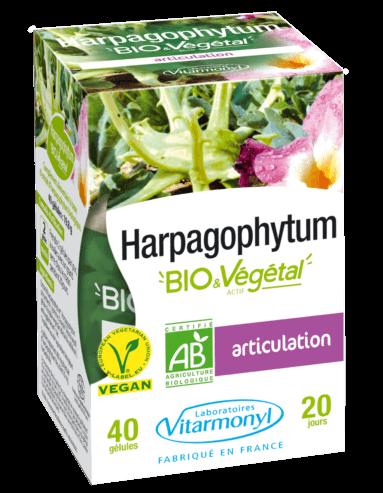 Image Harpagophytum BIO