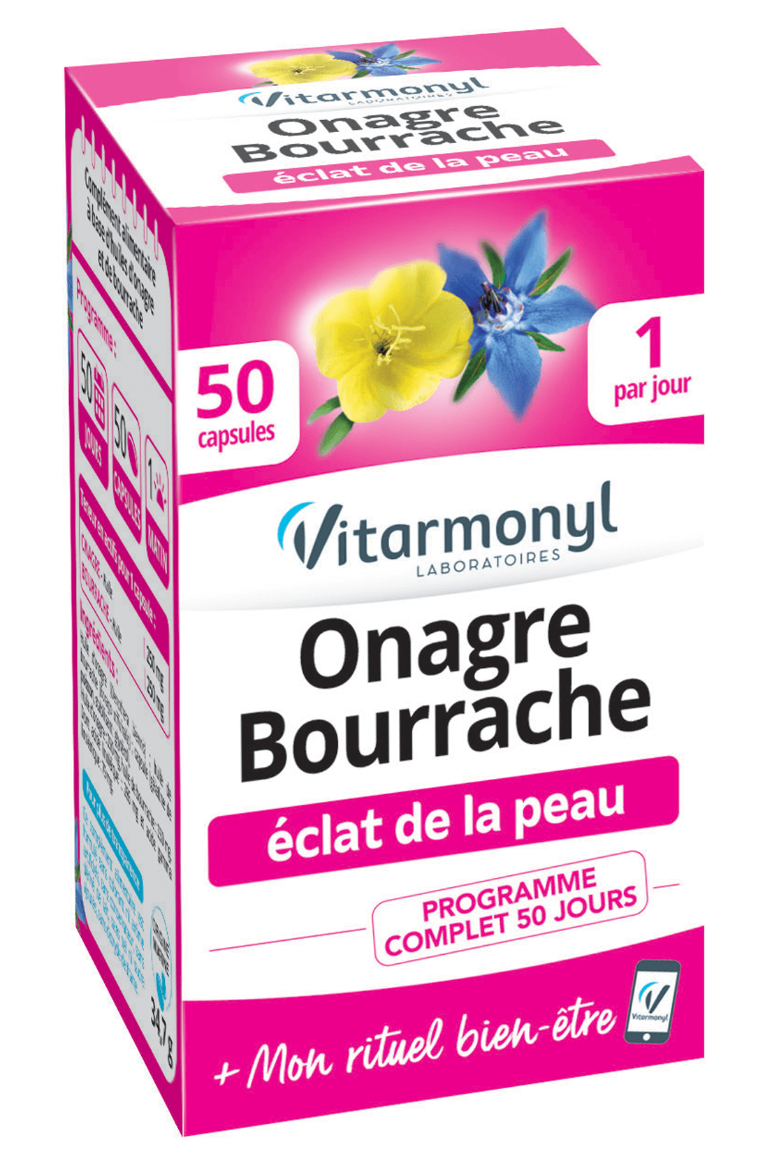 Onagre Bourrache